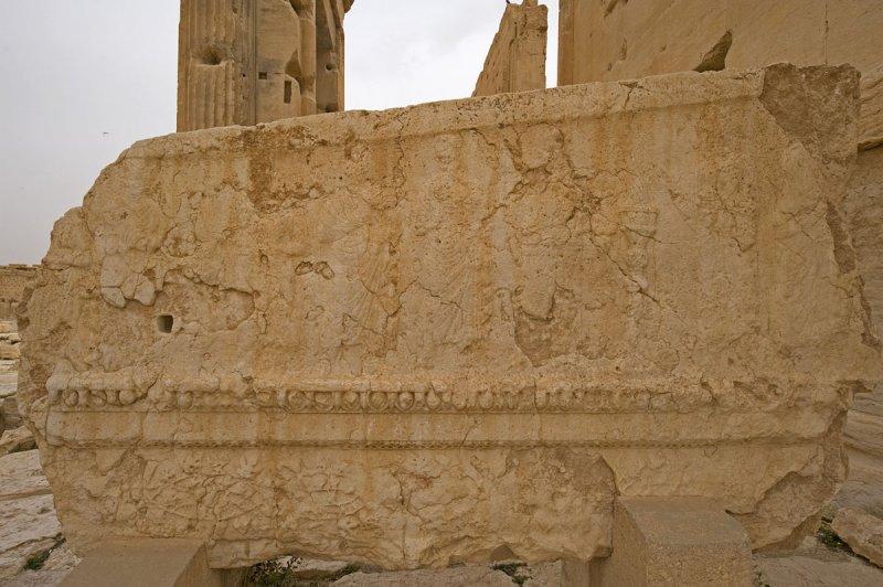 Palmyra apr 2009 0223.jpg