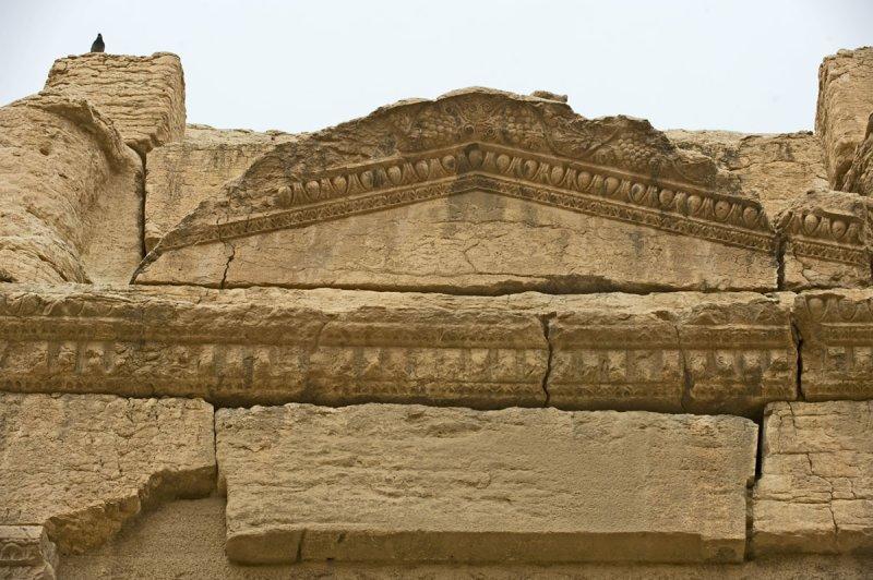 Palmyra apr 2009 0252.jpg