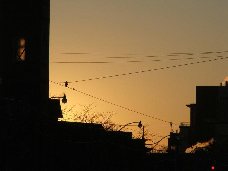 The sun is setting on College Street, Toronto