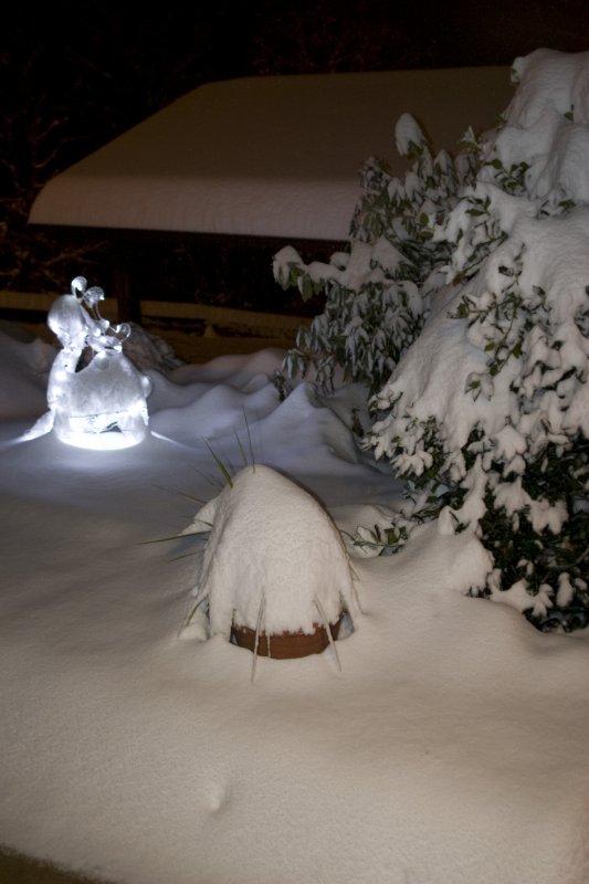 1218 Snow_10.jpg