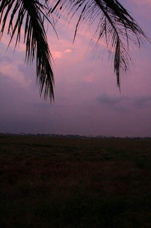India2009985.jpg