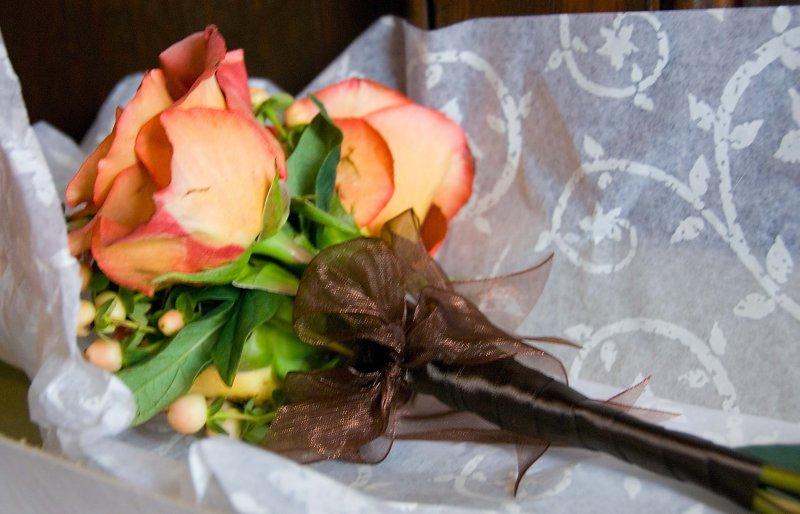 pbase Flowers 1 DSC_0016.jpg