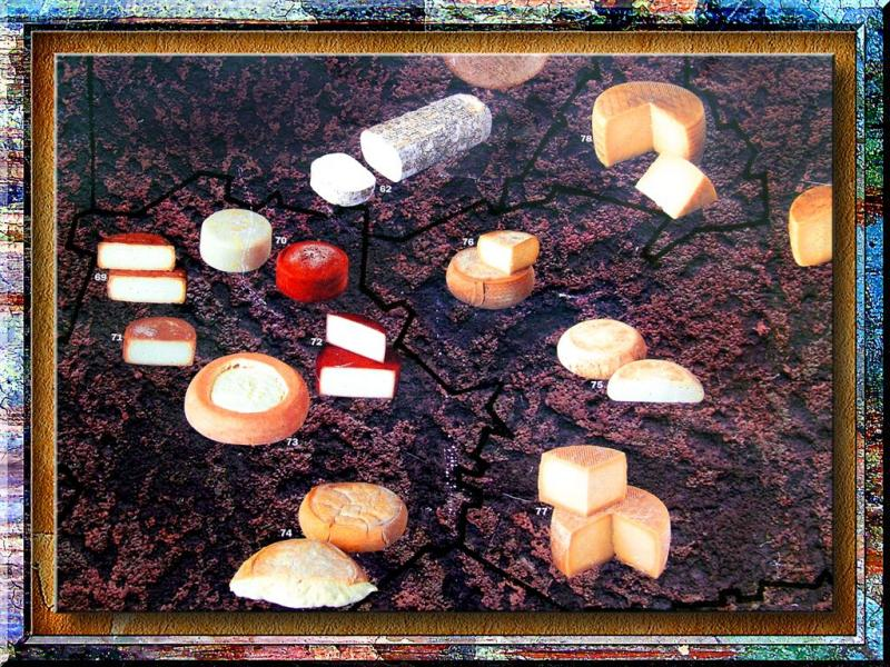 Cheeses In Pyrenees Region