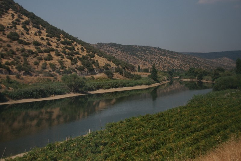 Train to Bandirma 04  the river and the grapes.jpg