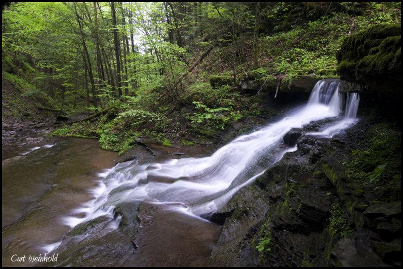 Campbell Run upper falls