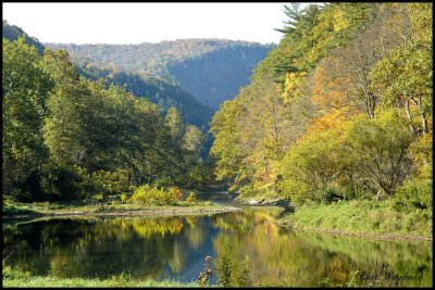 Pine Creek near Darling Run & the old CCC site.
