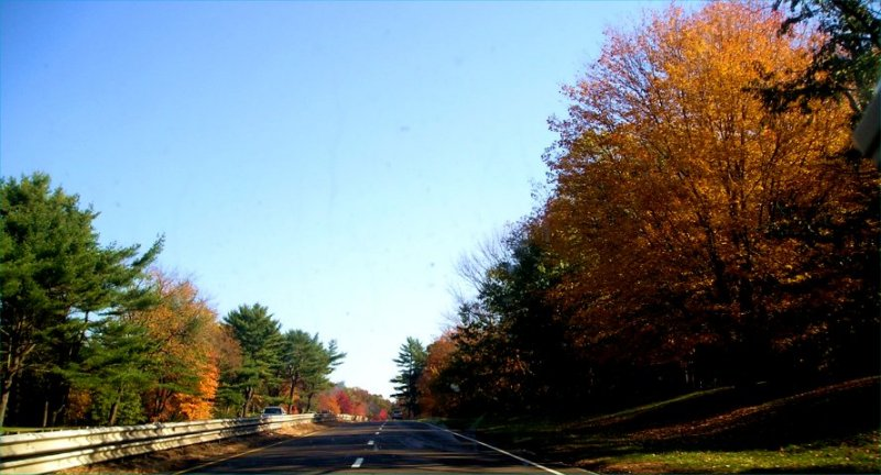 Driving into fall