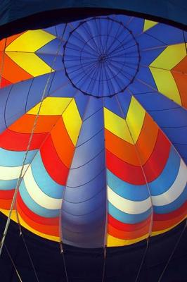 Polo Balloon Festival 26267