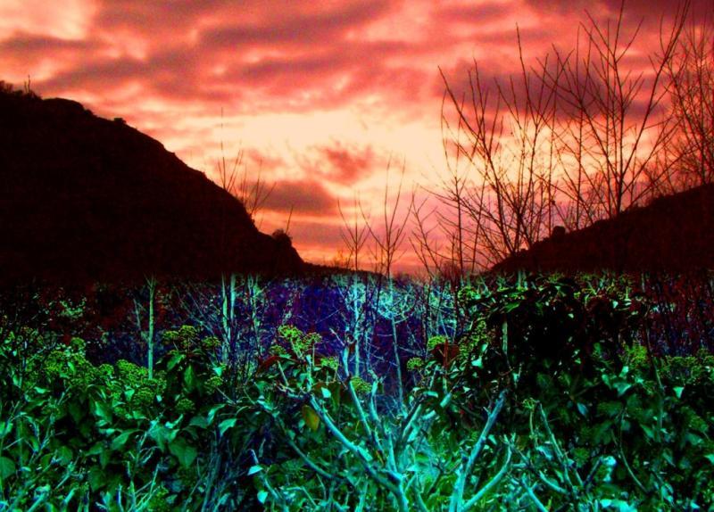 Sun Set at Esen Farm Kastamonu
