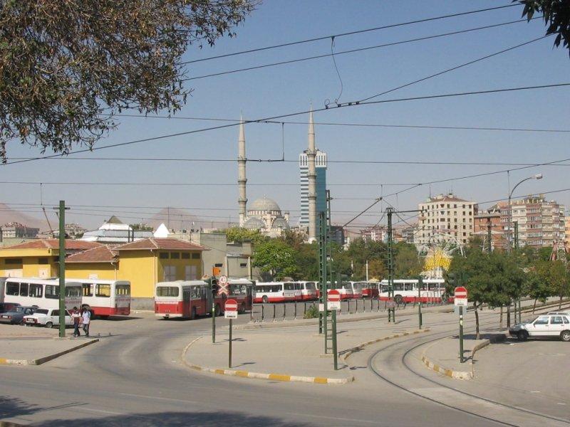 20060917 204.jpg
