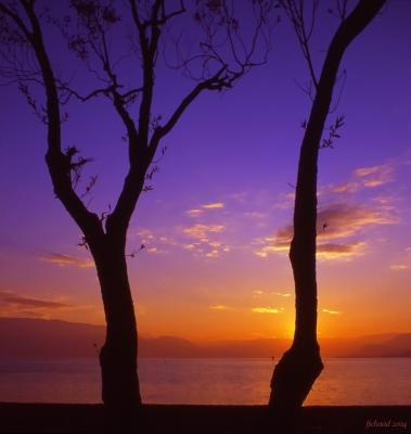 Gyro Sunset