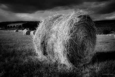 Time for a Bale