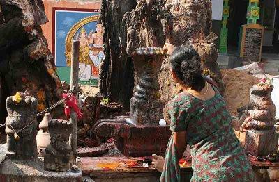 Muthiah Swami Mariamman Temple near Madurai. http://www.blurb.com/books/3782738