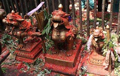 In front of the Kali temple, Dakshinkali, Nepal.