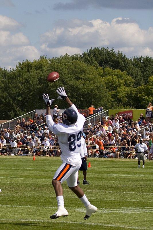 08-10-08 Bears 103.jpg