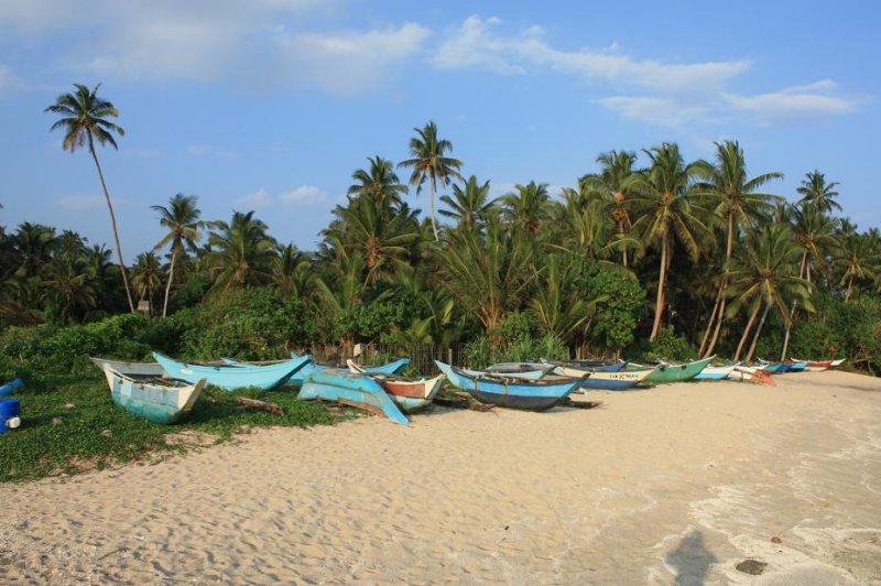 Fishing Boats - Mirissa