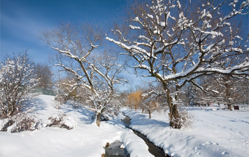 Peyton Creek in Winter