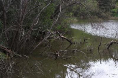 Crocker Lake