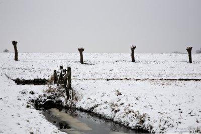 Winter polder lines, 2010