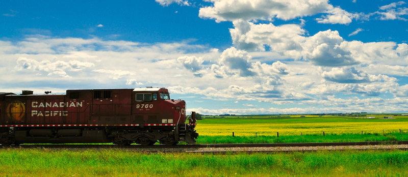 CP in Alberta Canola Fields