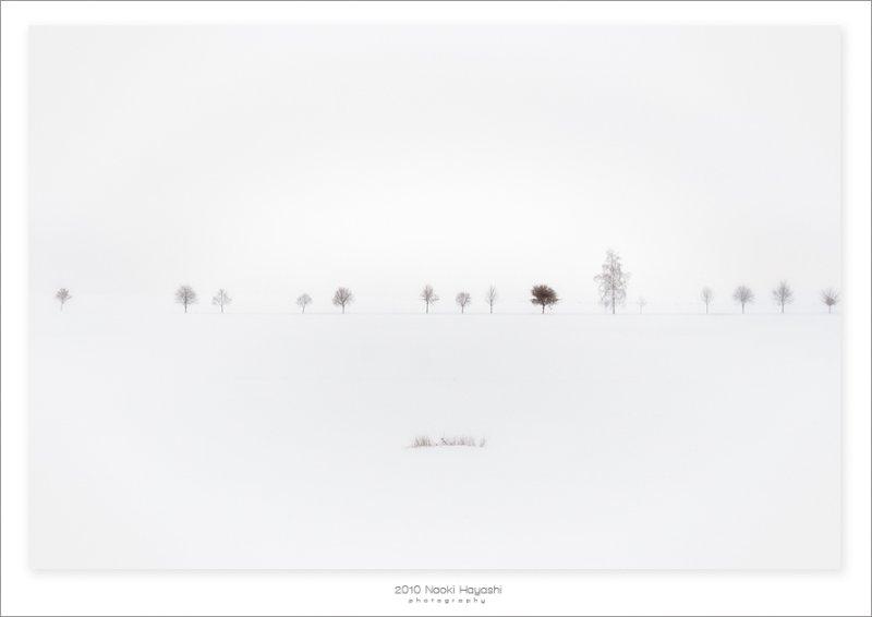 Image 73