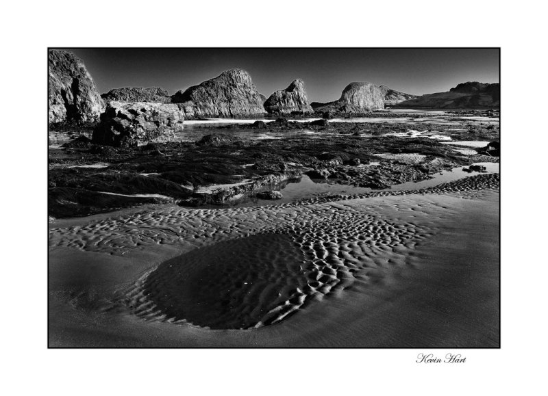 BW coast 0808 jerry_tn.jpg
