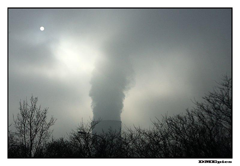29 januari 2009.jpg