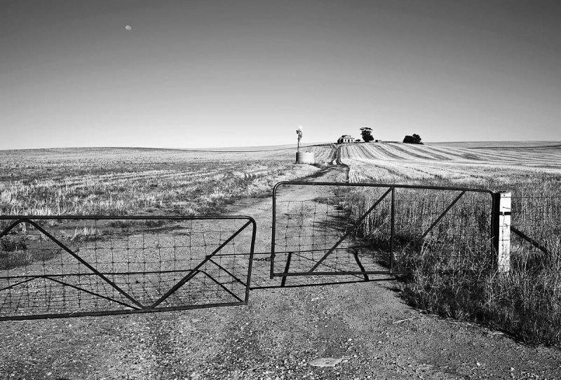 Abandoned Mid North Homestead