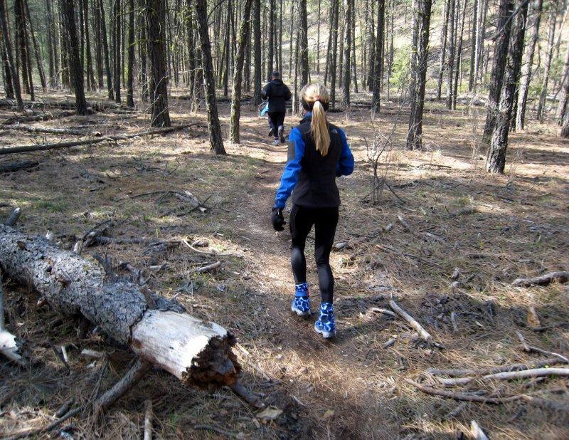 easy trail