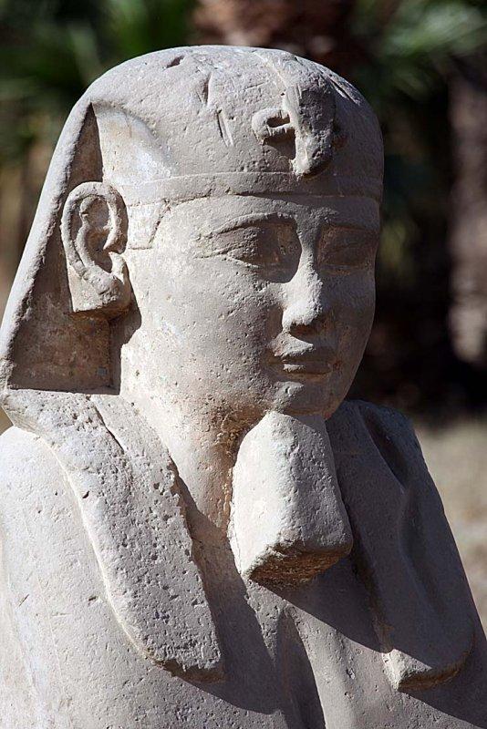 Luxor_10_033.jpg