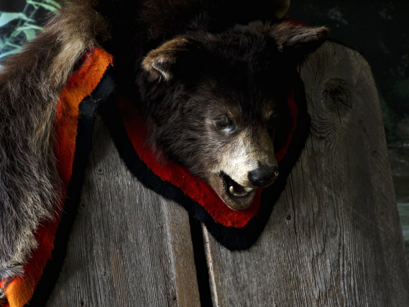 Bearskin, Forks, Washington, 2009