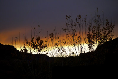 Sunset, Arches National Park, 2009