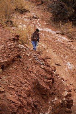 Leading the way, Monument Valley, Arizona, 2009