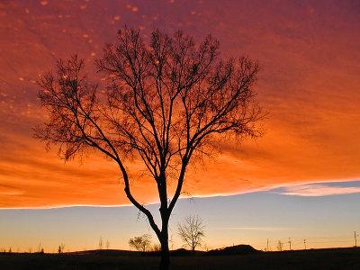 Chinook Arch Sunset