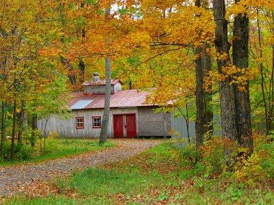 cabane à sucre en automne