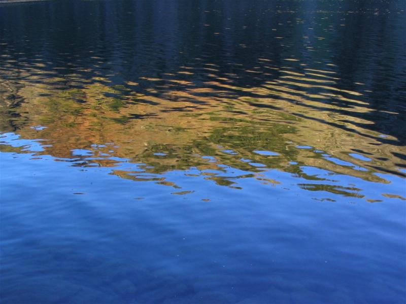 Water ripples on a wilderness lake