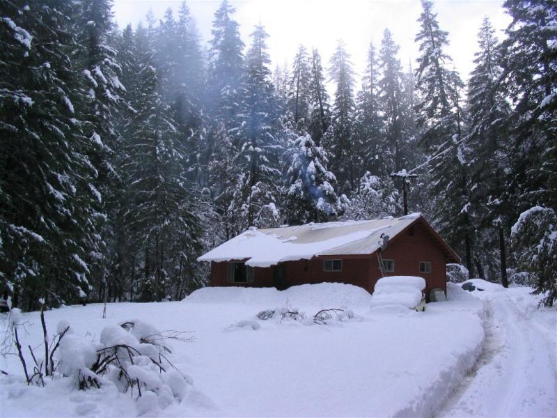 Little Grider cabin