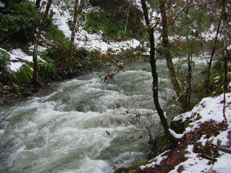 Little Grider creek