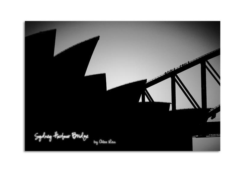 Sydney Harbour Bridge Climber