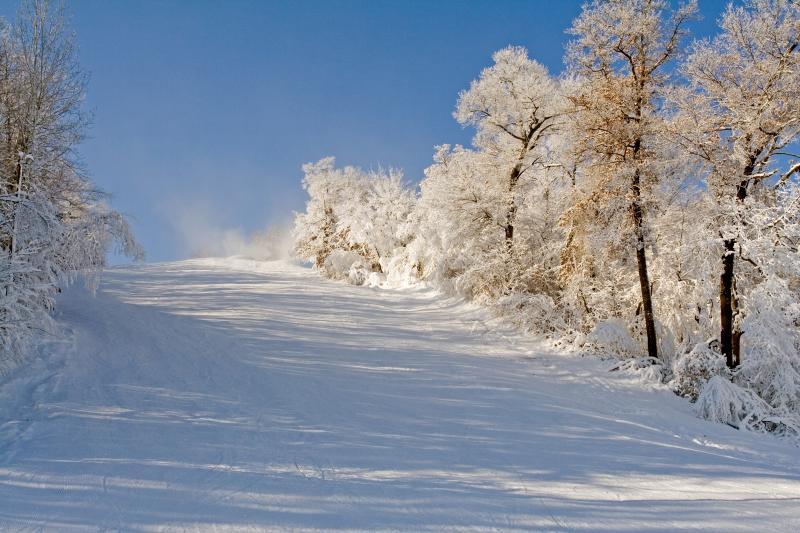 Welch_snow 44_pp.jpg