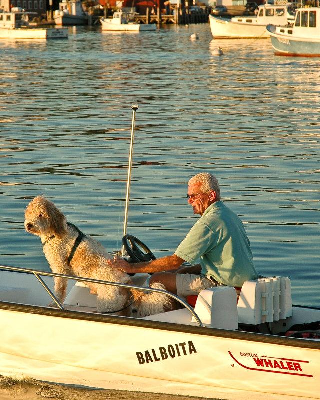 Man & Dog - Boothbay