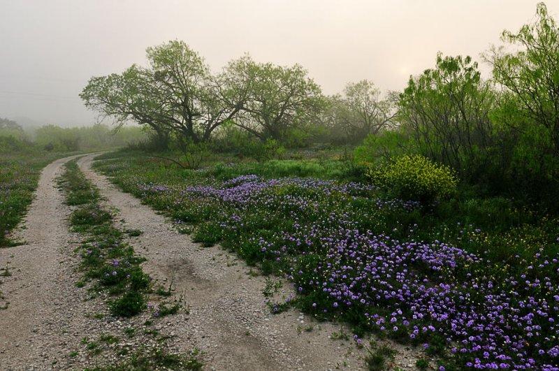 APR_0480 Atascosa County, Texas