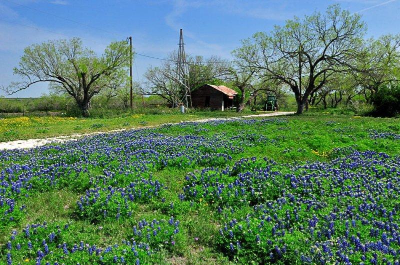 APR_0524 Karnes County, Texas