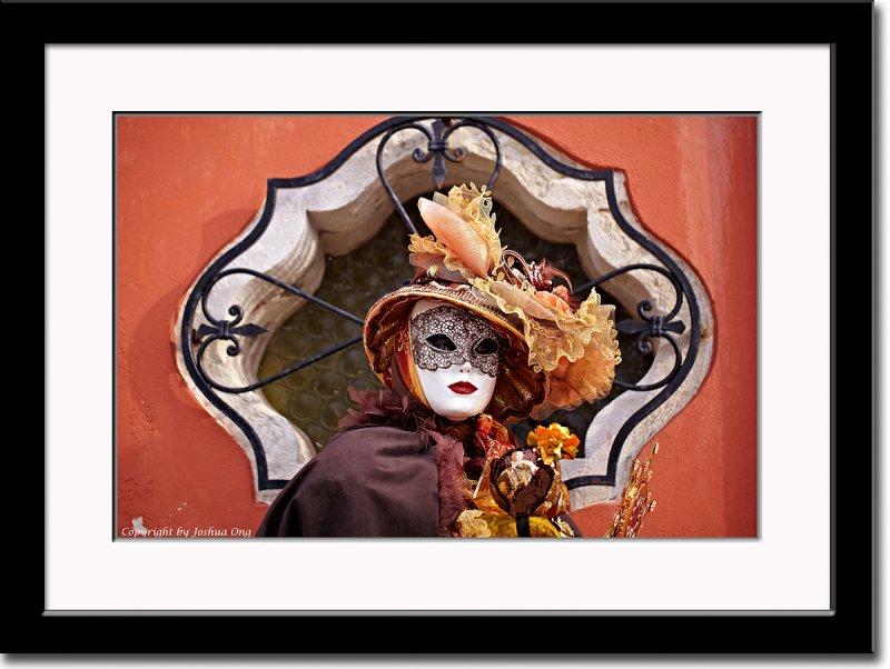 Framed Elegant Mask