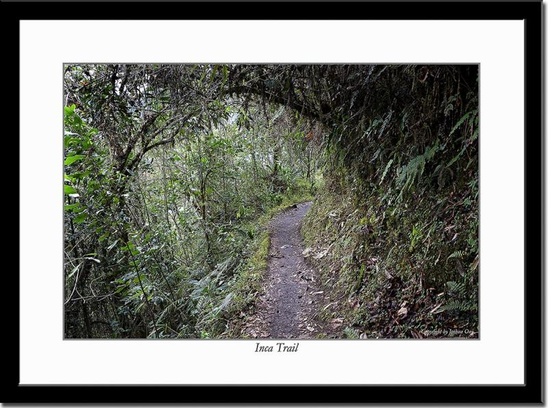 One of Several Inca Trails Leading to Machu Picchu