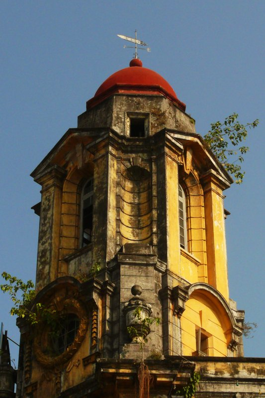 Colonial tower with growth.jpg