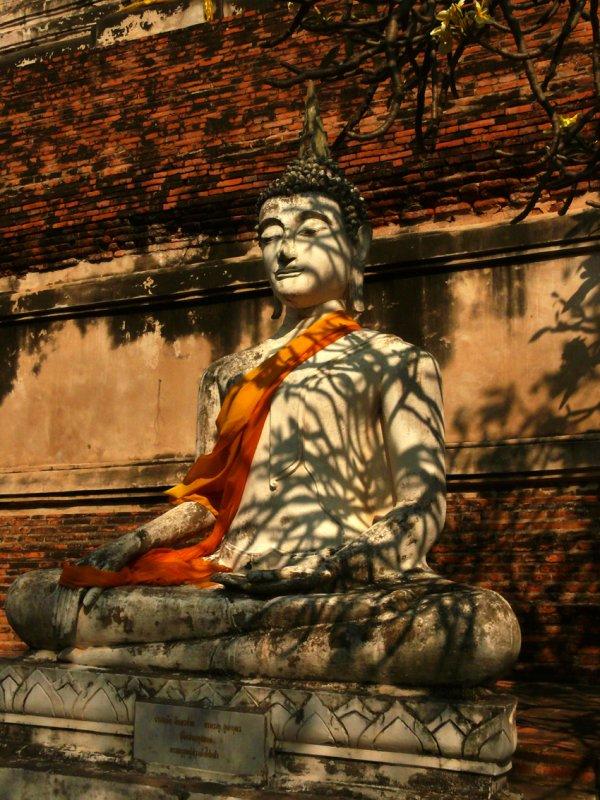 Buddha and tree branches.jpg