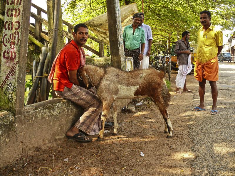 Man with goat.jpg