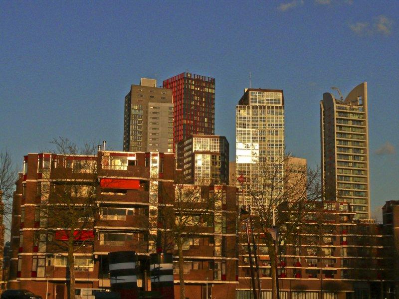 View over Rotterdam.jpg