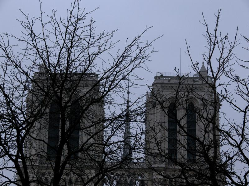 Tree view or Notre Dame